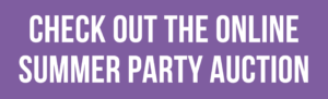 Check out the online summer party auction